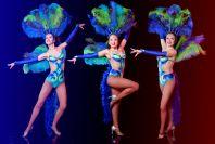 """Шоу-балет """"Мираж"""" 8910-887-09-51"""