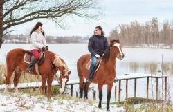 Фотосессии с лошадьми и пони.