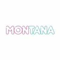 Кавер группа «Montana»